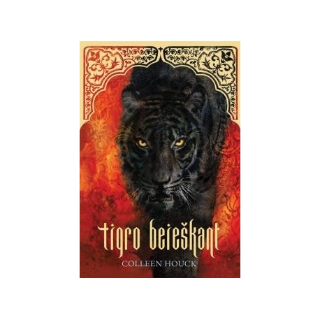 Tigro beieškant